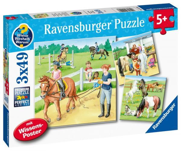 3 x 49 Teile Ravensburger Kinder Puzzle Ein Tag auf dem Reiterhof 05129